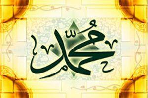 توصیف پیامبر اکرم(ص) از زبان امام رضا(ع)